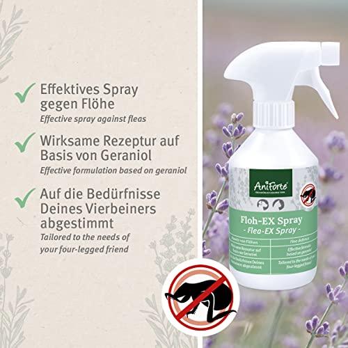 AniForte Floh-EX SPRAY 250 ml – Naturprodukt für Hunde - 2