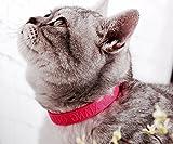 OHA-PET Katzen- & Hunde Ungezieferhalsband Flohhalsband gegen Flöhe, Zecken, Milben, Keimhemmend Gr. 27 cm ROSA – angenehmer Duft – DAS KATZENFLOHBAND für Ihre Mietze - 2