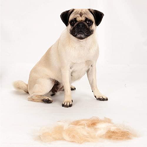 FURminator Fellpflege deShedding-Pflegewerkzeug (für kurzhaarige große Hunde von 23 bis 41 kg, Größe L), 1 stück - 7