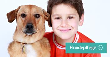Hundepflegeprodukte kaufen auf Hundefloh.com