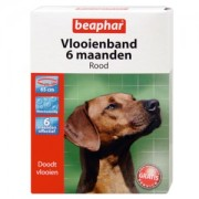 Beaphar Flohband Hund - 6 Monate - Rot