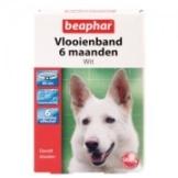 Beaphar Flohband Hund - 6 Monate - Weiß