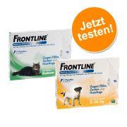 Frontline® Spot Set für Katzen & kleine Hunde - je 3 Pipetten für Katzen & Hunde (S)